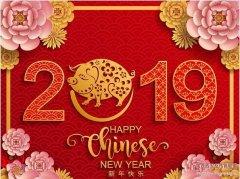 2019祝大家新年快乐
